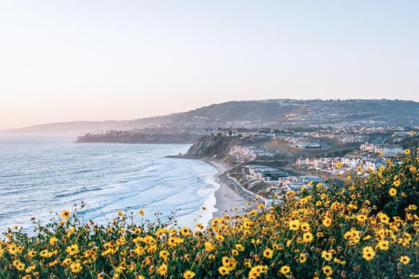 Orange County beach ocean AdobeStock_261123863