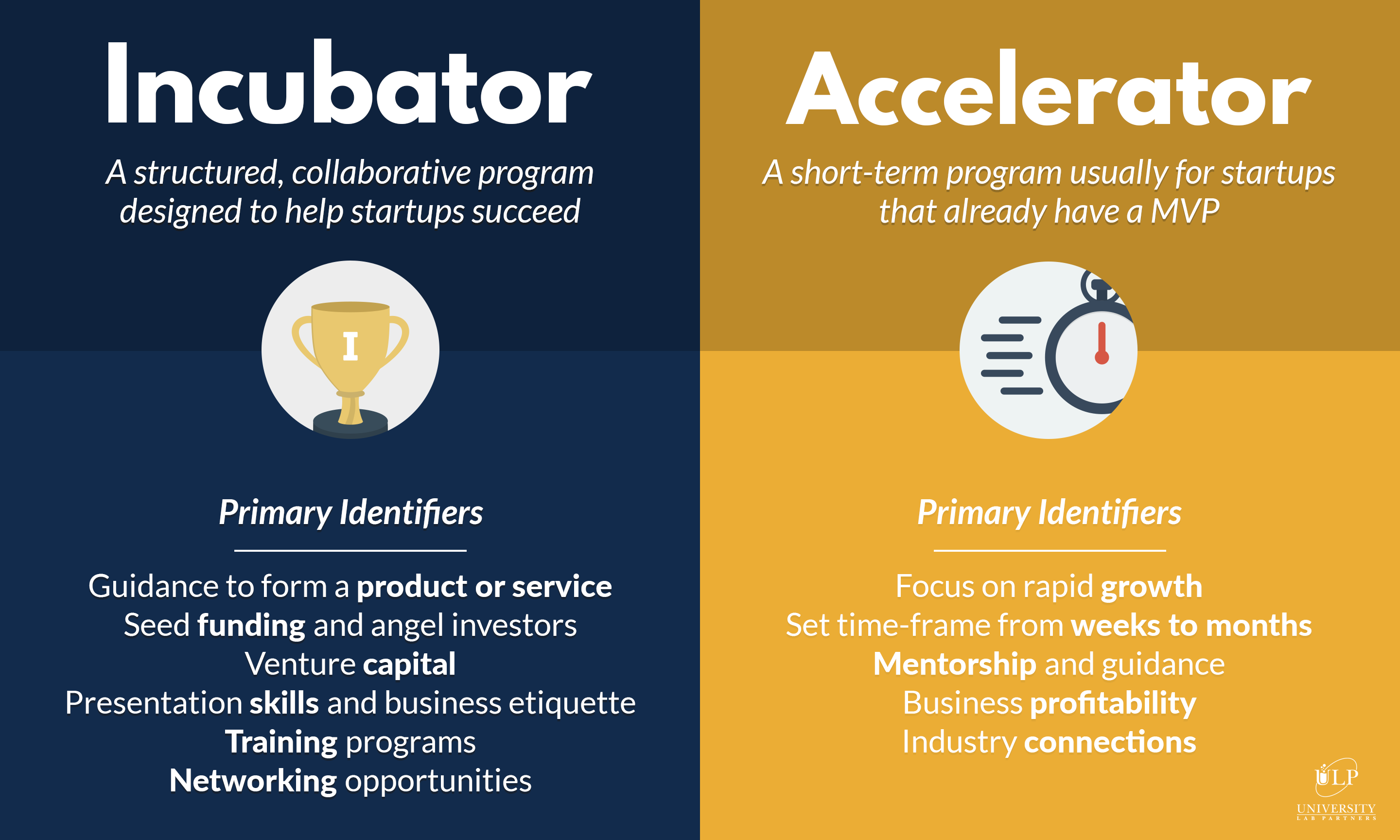 incubator and accelerator infographic