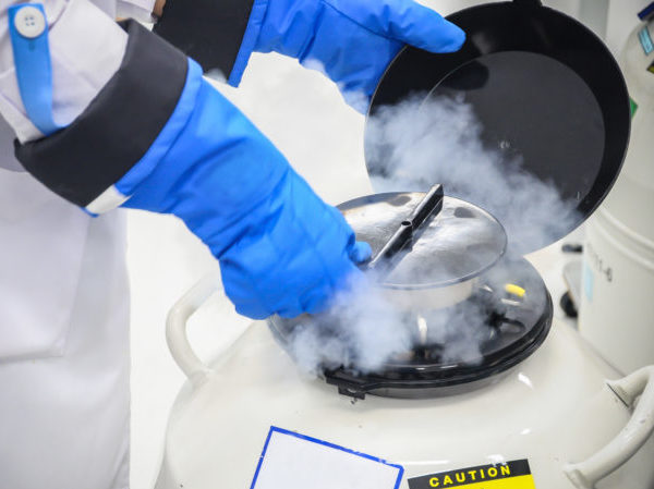 person with blue gloves using scientific equipment