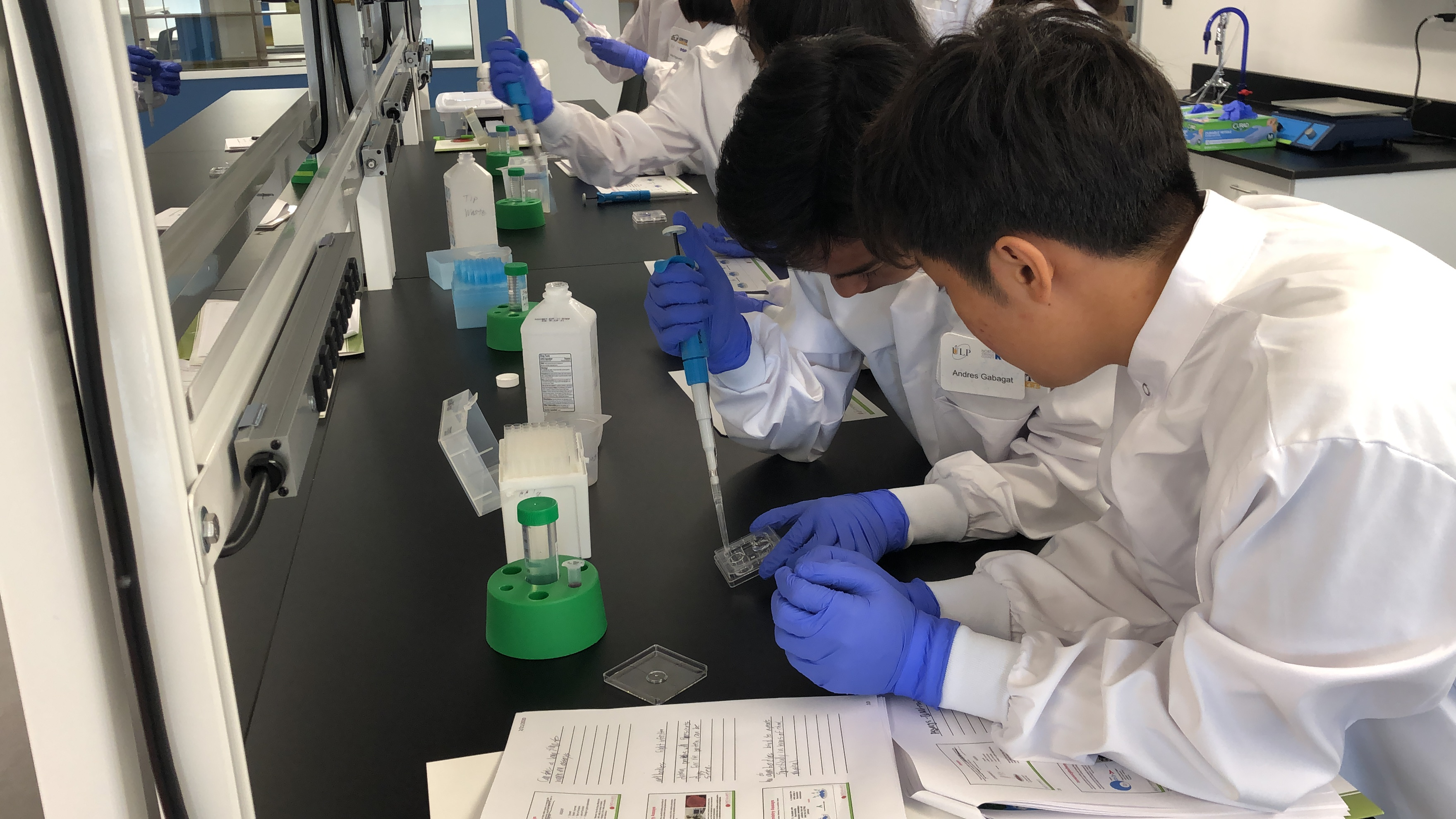 Molecular Biology Laboratory Techniques – Training Course