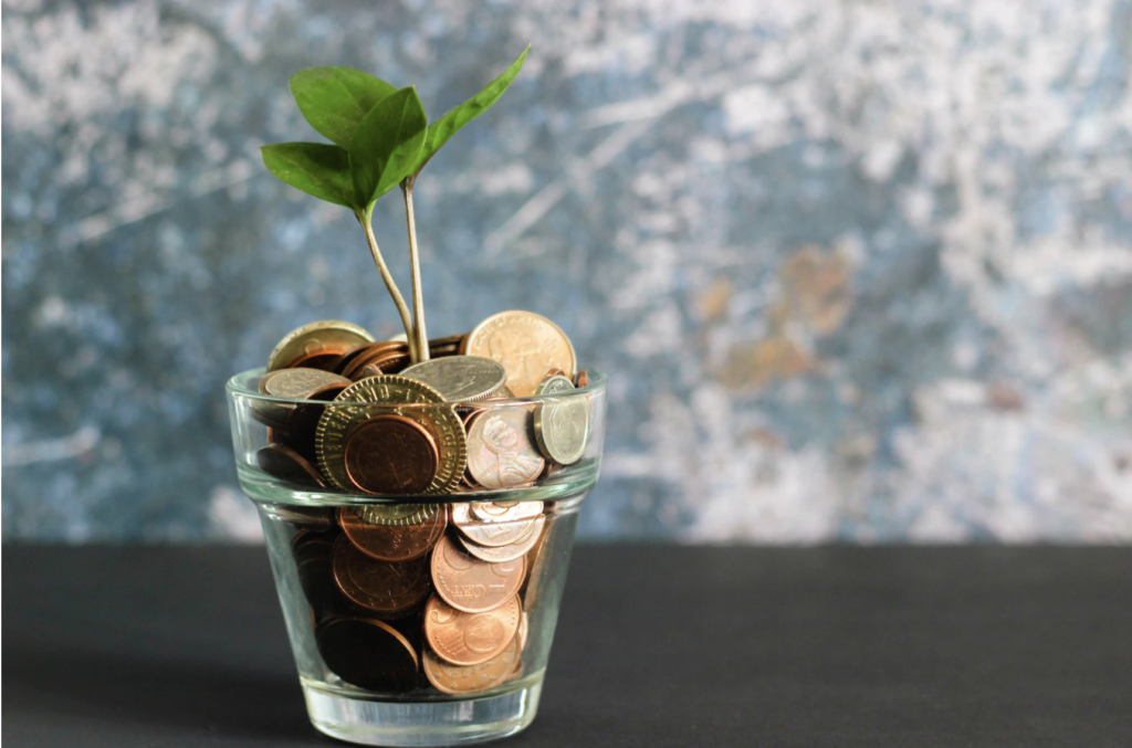 coins in cup with plant growing